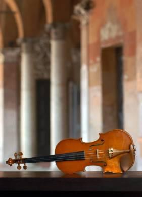 Immagine violino