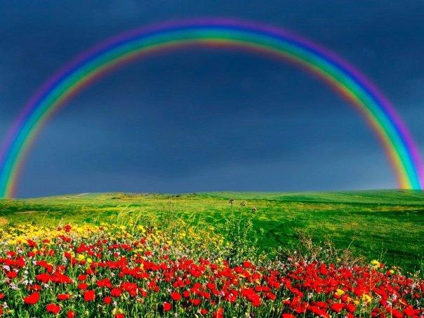 paesaggi_arcobaleno_e_tulipani