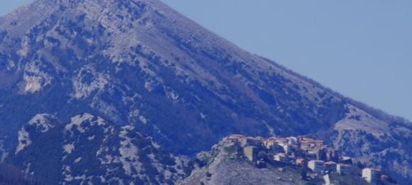 immagine2