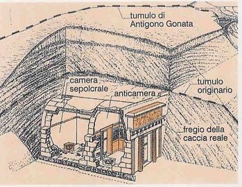 www-amicisaia-it_1